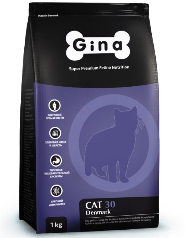 Gina Adult Cat