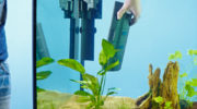 Самые лучшие внутренние и внешние фильтры для аквариума